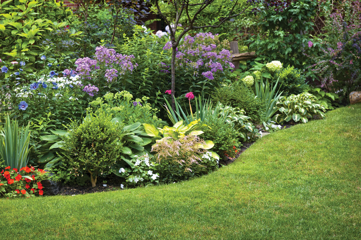 View great lawn and shrub care work in this garden