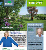 Timely Tips Spring 2017