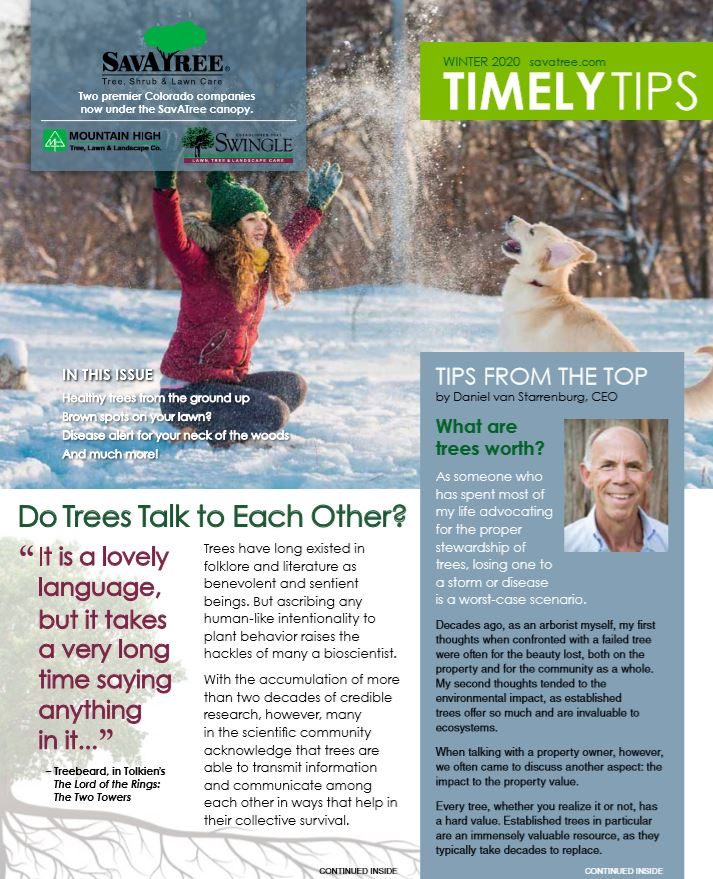 Timely Tips Fall 2019 Cover CO Residential