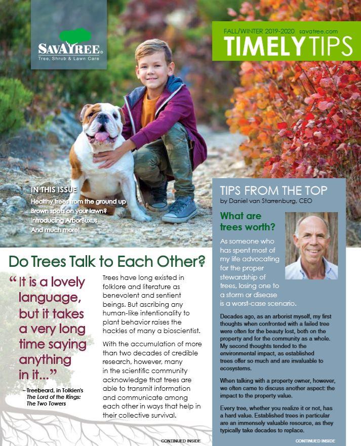 Timely Tips residential cover fall 2019