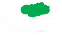 Lawn Care and Tree Service