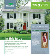 SavATree Timely Tips Newsletter Archives | Tree Care Newsletter