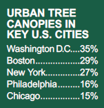 Urban Tree Canopies in US