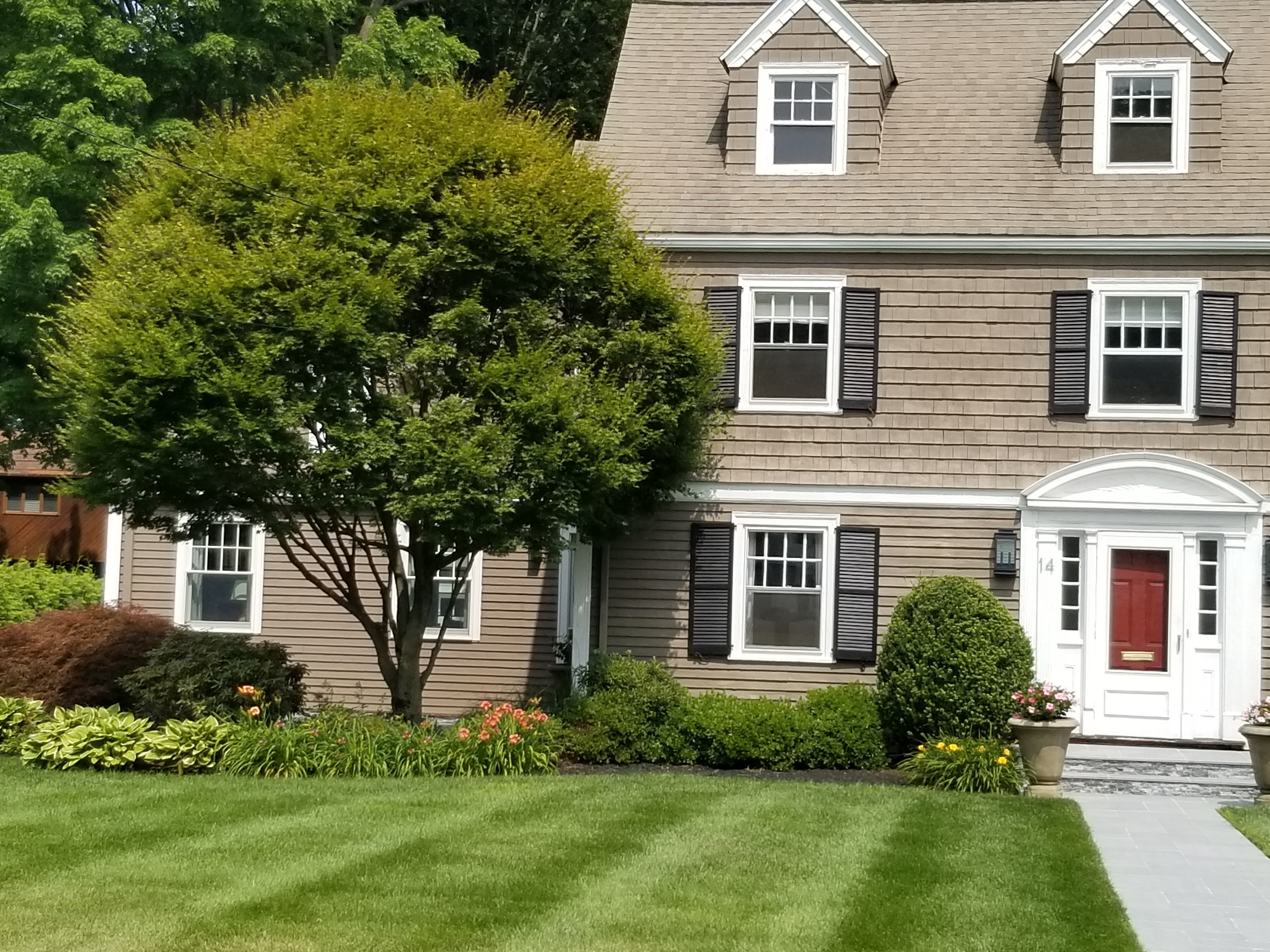 tree care hartford ct