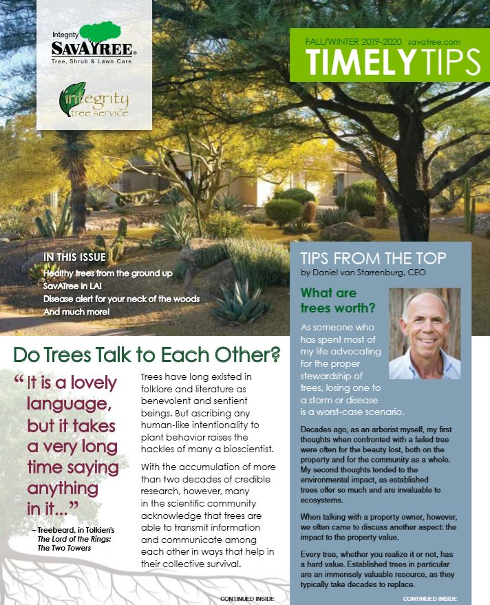 Timely Tips Fall 2019 Arizona Cover