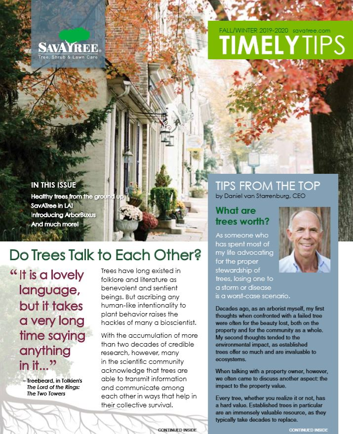 Urban Timely Tips Fall 2019 Cover