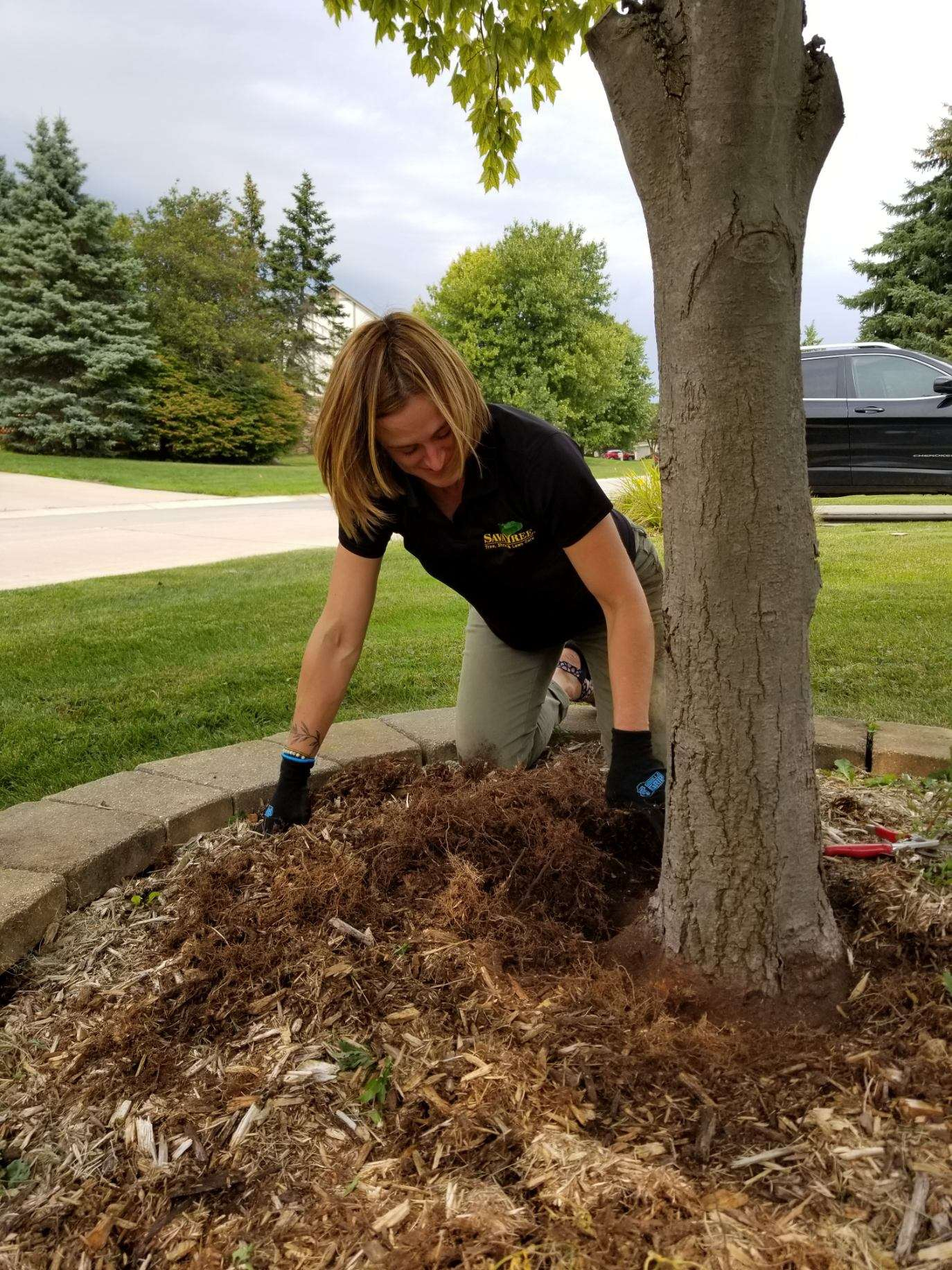 Tree Service in Rochester, MI