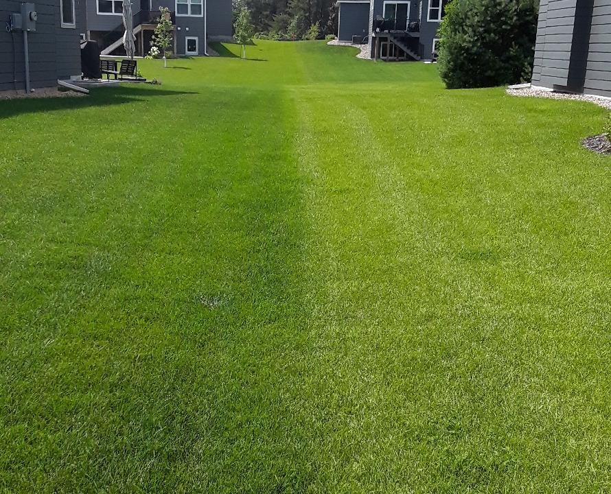 Lawn Service in North Oaks, MN