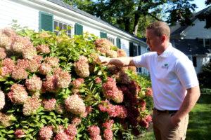 SavATree Tree Services & Lawn Care