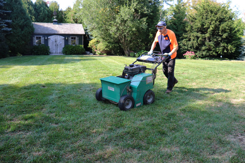 SavATree Lawn Care Services